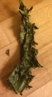 Kale Chip Close-up