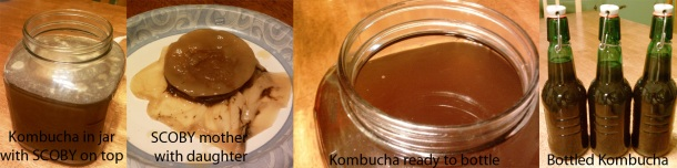 Kombucha Bottling Process