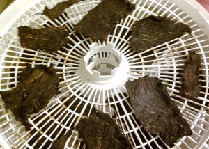 beef jerky - finished drying